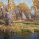 shields_rv_cottonwoods_11x14_oil